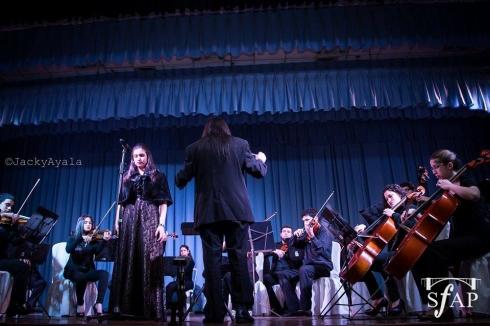 La orquesta estará compuesta por elementos de cuerdas y vientos, como violines, violas, chelos,  contrabajos, flautas, clarinetes, oboe y saxofón, además de metales, como  trompeta, trombón y corno.