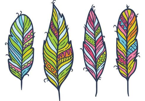 free-feather-isolated-vector-set